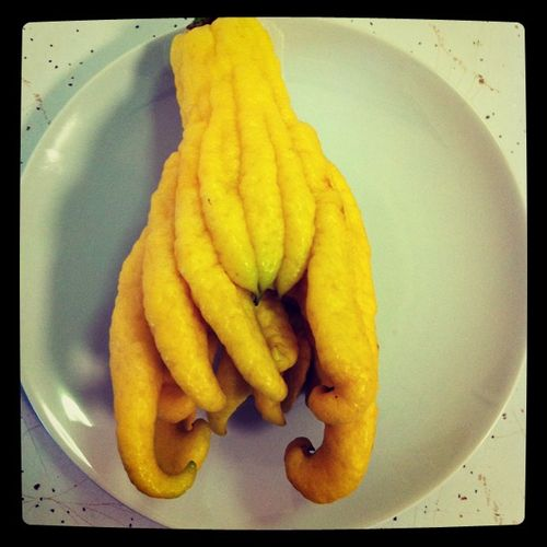 Cthulhu_fruit_debcha