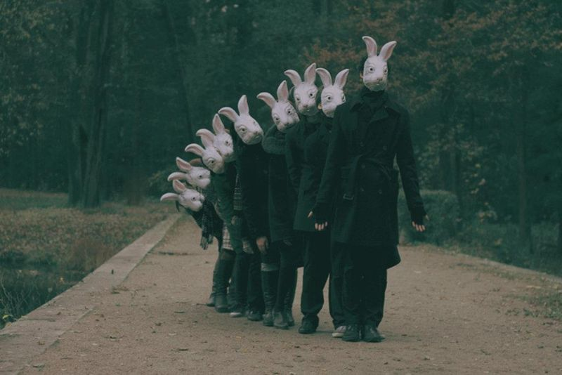 Bunnies_creepy