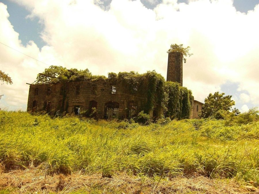 Abandoned mill_Barbados