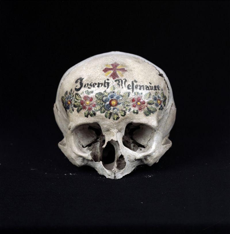 Skull_PaulKranzler-05