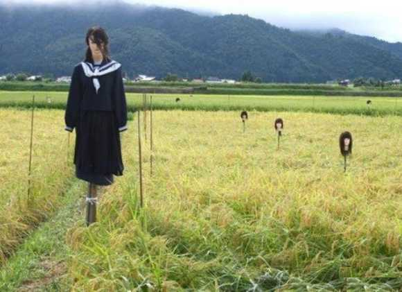 Scarecrow_Japan_schoolgirls