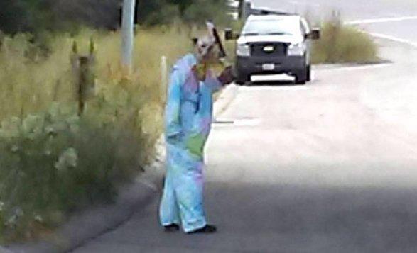 Clown hitcher with machete_HuffPo