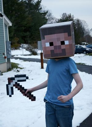 Minecraft_in costume_TimPierce