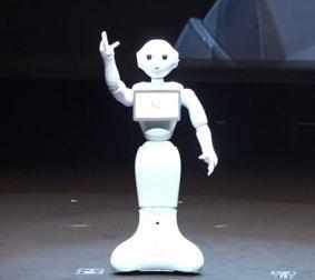 Pepper bot