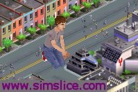 Sims_slice